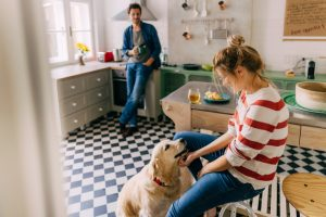 3 Ways To Create a Pet-Friendly Kitchen